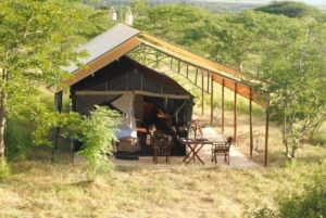 Tanzania Bush Camp Serengeti